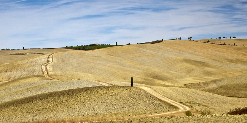 Plowed fields after harvest in Tuscany Italy, with trees, on the Triboli River.